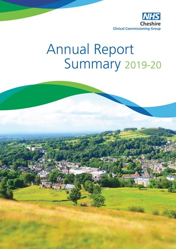 Annual Report Summary